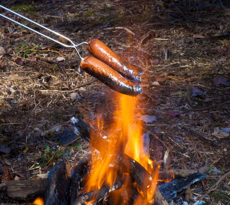 Hot dogs that are cooked over a small campfire 免版税图像