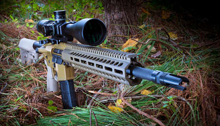 AR-15 in a forest with a high powered rifle scope Stock Photo