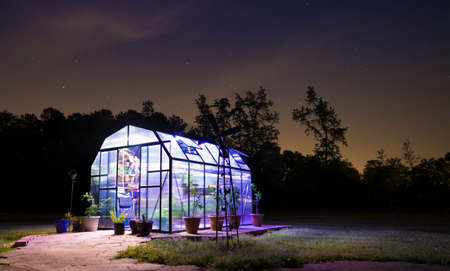 Greenhouse lighted at night with stars behind and door open 版權商用圖片