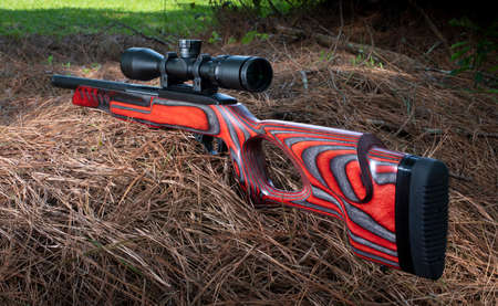 Red stocked rimfire rifle on pine needles ready to shoot