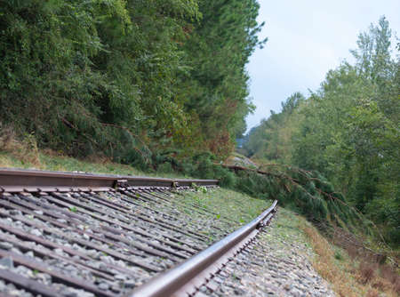 Trees have come down after Hurricane Florence across a railroad track near Fayetteville North Carolina