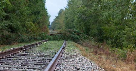 Trees across a railroad line near Fayetteville North Carolina after Hurricane Florence Archivio Fotografico - 136163420