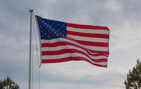 Americna flag with trees below with motion blur caused by the wind