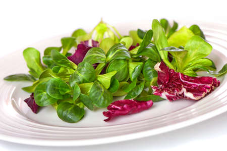 mix salad with spinach isolated on white background