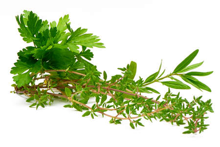 Parsley, Celery, Sage, Thyme, Rosemary, fresh herbs isolated on white background