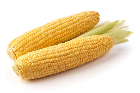 Fresh ears of corn isolated on white background