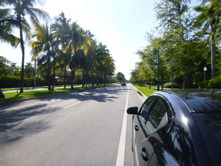 key biscayne: Boulevard with palm trees in Key Biscayne