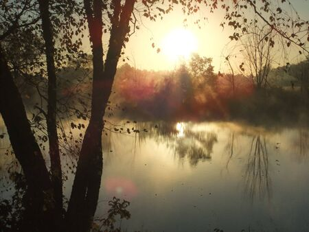 Sunrise at farm pond by the birch tree