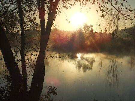 Sunrise at farm pond by the birch tree 版權商用圖片 - 18271447