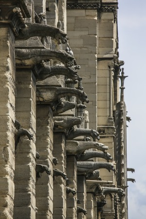 Stunning vertical fragment of gargoyle wall of Notre Dame of Paris, France