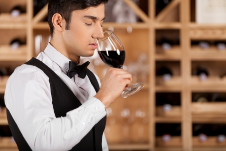closed society: Tasting wine  Cropped image of confident young sommelier standing in front of shelf with wine bottles and keeping arms crossed Stock Photo