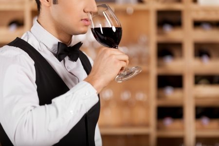 tie tuxedo: Smelling a good wine  Cropped image of confident young sommelier standing in front of shelf with wine bottles and keeping arms crossed