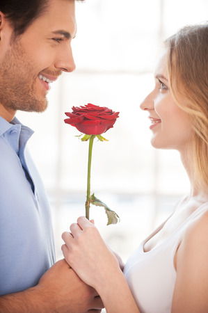 other side of: Romantic moment. Cheerful young loving couple holding a red rose together and smiling while standing face to face  Stock Photo