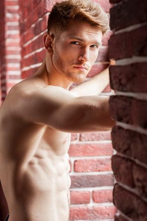 hombre sin camisa: Sentirse coqueta. Hombre sin camisa joven hermoso que mira a la cámara mientras está de pie delante de la ventana