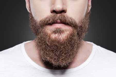 young adult men: Perfect beard. Close-up of young bearded man standing against grey background Stock Photo