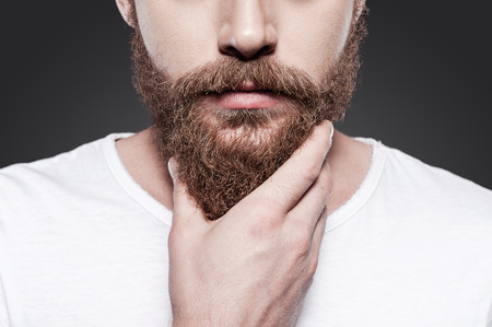 hombre con barba: Tocar su perfecta barba. Primer plano de hombre barbudo joven tocando su barba mientras est� de pie contra el fondo gris Foto de archivo