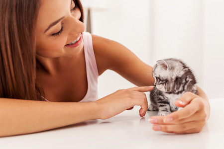 stroked: Enjoying their time together. Little cute kitten sitting on the table while being stroked by beautiful young woman