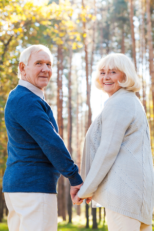 holding hands while walking: Spending time together. Rear view of happy senior couple holding hands and looking over shoulder while walking by park together Stock Photo