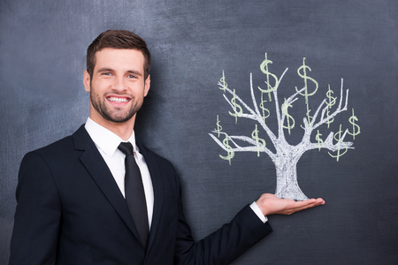 Wealthy world. Handsome young man smiling and looking at camera while standing against chalk drawing on the blackboard photo