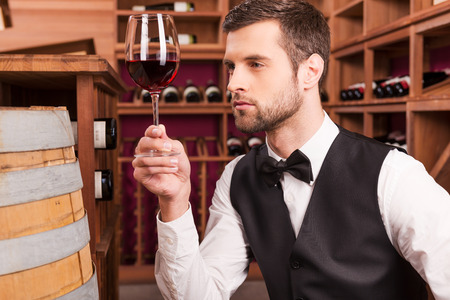 wine testing: This wine is just perfect. Confident male sommelier examining wine while looking at the wineglass and sitting near the wine barrel