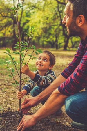 sembrando un arbol: Dar una nueva vida. Niño pequeño alegre ayudando a su padre a plantar el árbol mientras trabajan juntos en el jardín