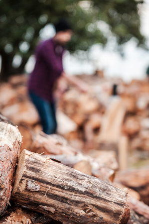 forester: Fresh wood. Close-up of logs laying on the ground while forester working in the background Stock Photo