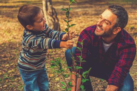 家族の木を植えること。幸せな若い男が彼の幼い息子が彼を支援しながら木を植えること