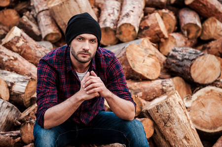 forester: Day dreaming on the logs. Handsome young forester keeping hands clasped and looking at camera while sitting on logs Stock Photo