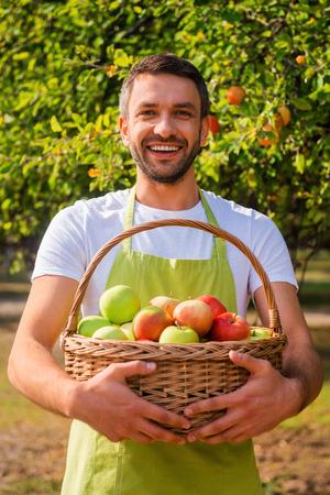 Riche moisson. Jeune jardinier heureux holding panier avec des pommes et souriant tout en se tenant dans le jardin