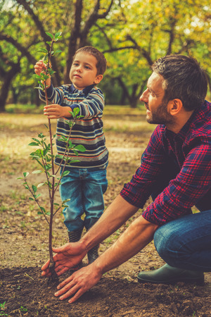 green environment: It is going to be a big tree! Little boy helping his father to plant the tree while working together in the garden