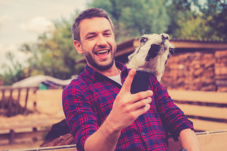 zoo: Selfie with llama. Cheerful young man making selfie with llama on his smart phone while standing in the zoo