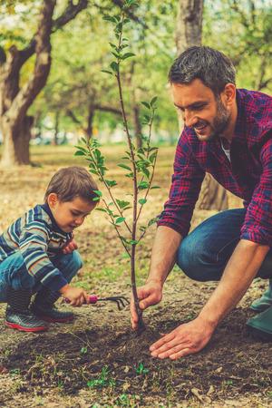 plantando arbol: Buen día para la jardinería. Hombre joven feliz que plantar un árbol, mientras que su pequeño hijo ayudándole