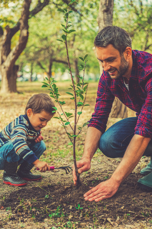 planting: Good day for gardening. Happy young man planting a tree while his little son helping him