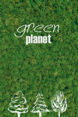 planeta verde: planeta verde. Primer plano concepto de planeta verde en el fondo del musgo Foto de archivo