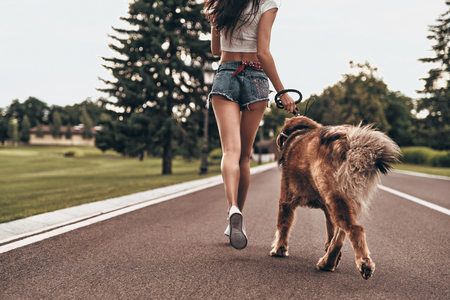They both love jogging. Close-up rear view of young woman running with her dog through the park while spending time outdoors