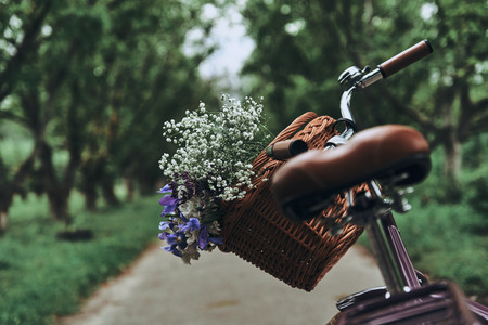 Waiting for owner. Close-up of bicycle with flowers in the basket standing on the road outdoors
