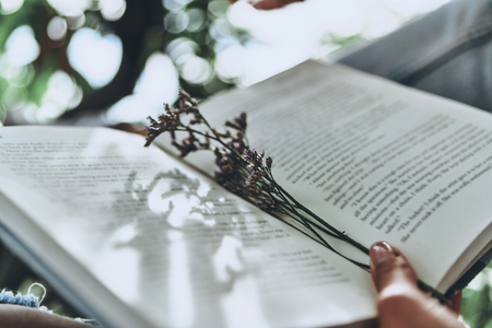Best way to spend the day. Close-up of woman holding an open book while spending time outdoors