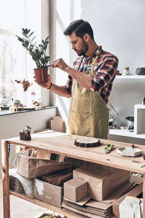 Greenery brings life to your home. Handsome young man in apron holding potted plant while standing in small garden center Stock Photo