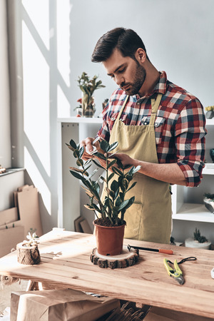 Proud of his plants. Handsome young man in apron working with potted plant while standing in small garden center