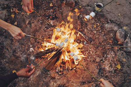 Cooking favorite food. Close up top view of young people roasting marshmallows over a bonfire while camping outdoors