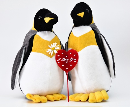 Toy penguins shot with heart shape.