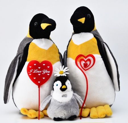to confess love: Toy penguins shot with heart shape.
