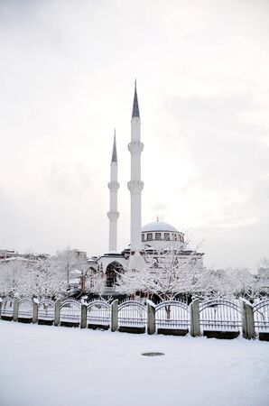 White mosque were shot under white clouds and snow  Stock Photo - 12603443