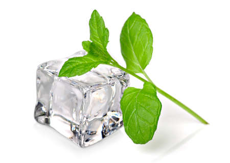 cool mint: Ice cube with fresh mint
