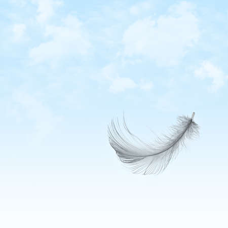 waft: Feather flying in cloudy sky