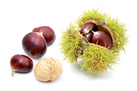 Chestnuts, isolated on a white background