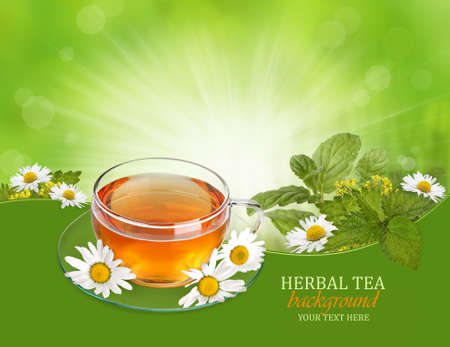 chamomilla: Herbal tea background with herbs and chamomile