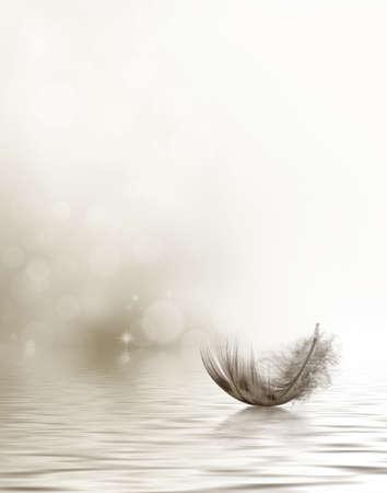 깃털이 물에 표류와 애도 또는 동정 디자인 스톡 콘텐츠