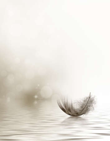 Condolence or sympathy design with a feather drifting on water
