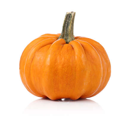 white background: Pumpkin on a white background